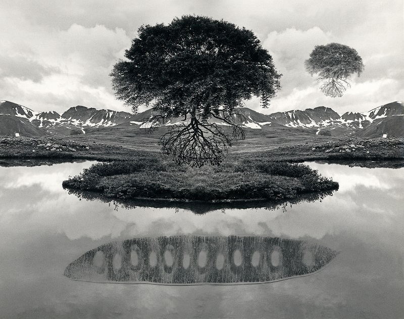 Jerry Uelsmann Untitled Floating Tree Catherine Couturier Gallery