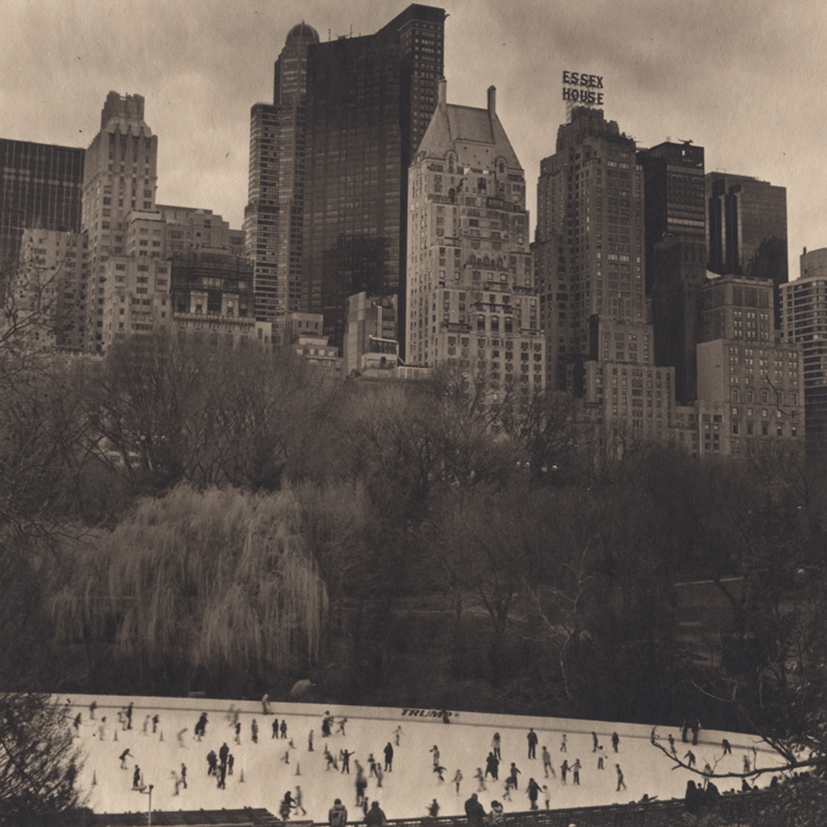 Takeshi Shikama Urban Forests - Central Park #22