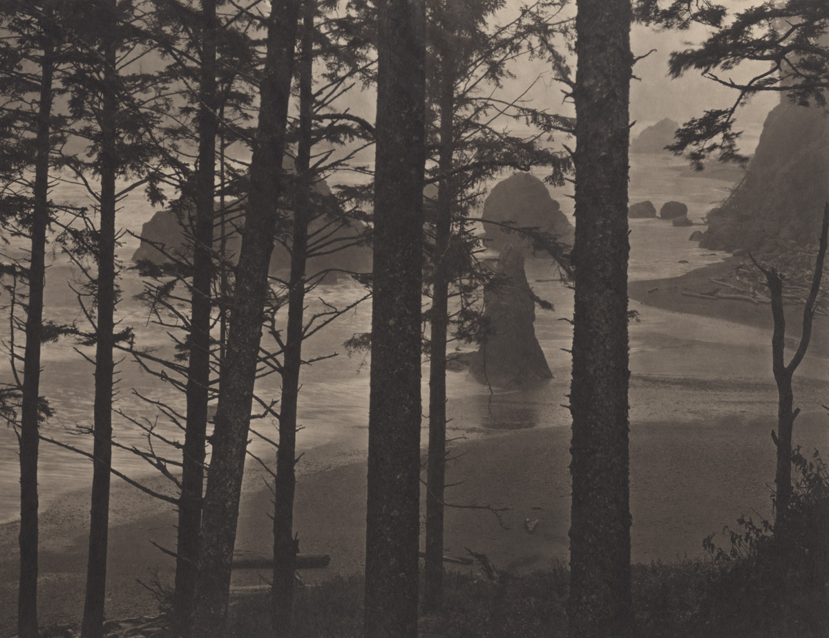 Takeshi Shikama Silent Respiration of Forests - Pacific Northwest: Ruby Beach #1